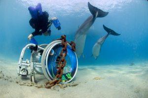 Scuba Cat Diving, Phuket, Thailand, DDI Instructor Training Centre