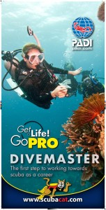 Scuba Cat Diving Phuket Thailand  5 * CDC