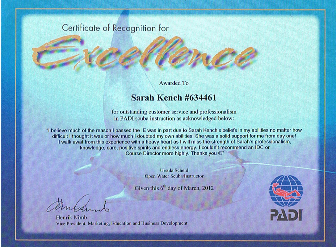 Scuba Cat Diving  Certificate of excellence