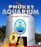 Scuba Cat Diving Phuket Thailand Things to do in Phuket