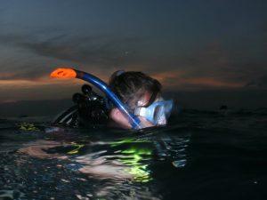 Scuba Cat Diving Phuket Thailand Similans Liveaboard