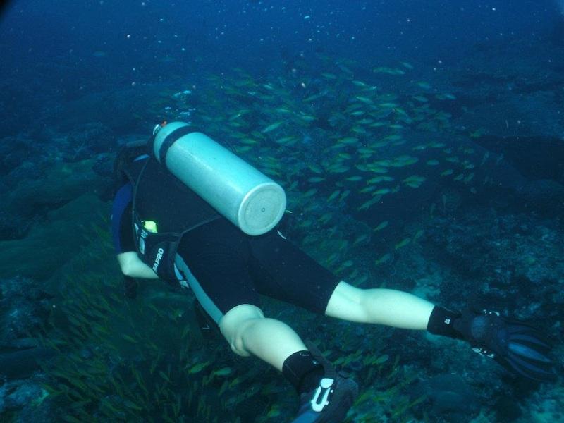 Scuba Cat Diving Phuket Thailand  Open Water Course