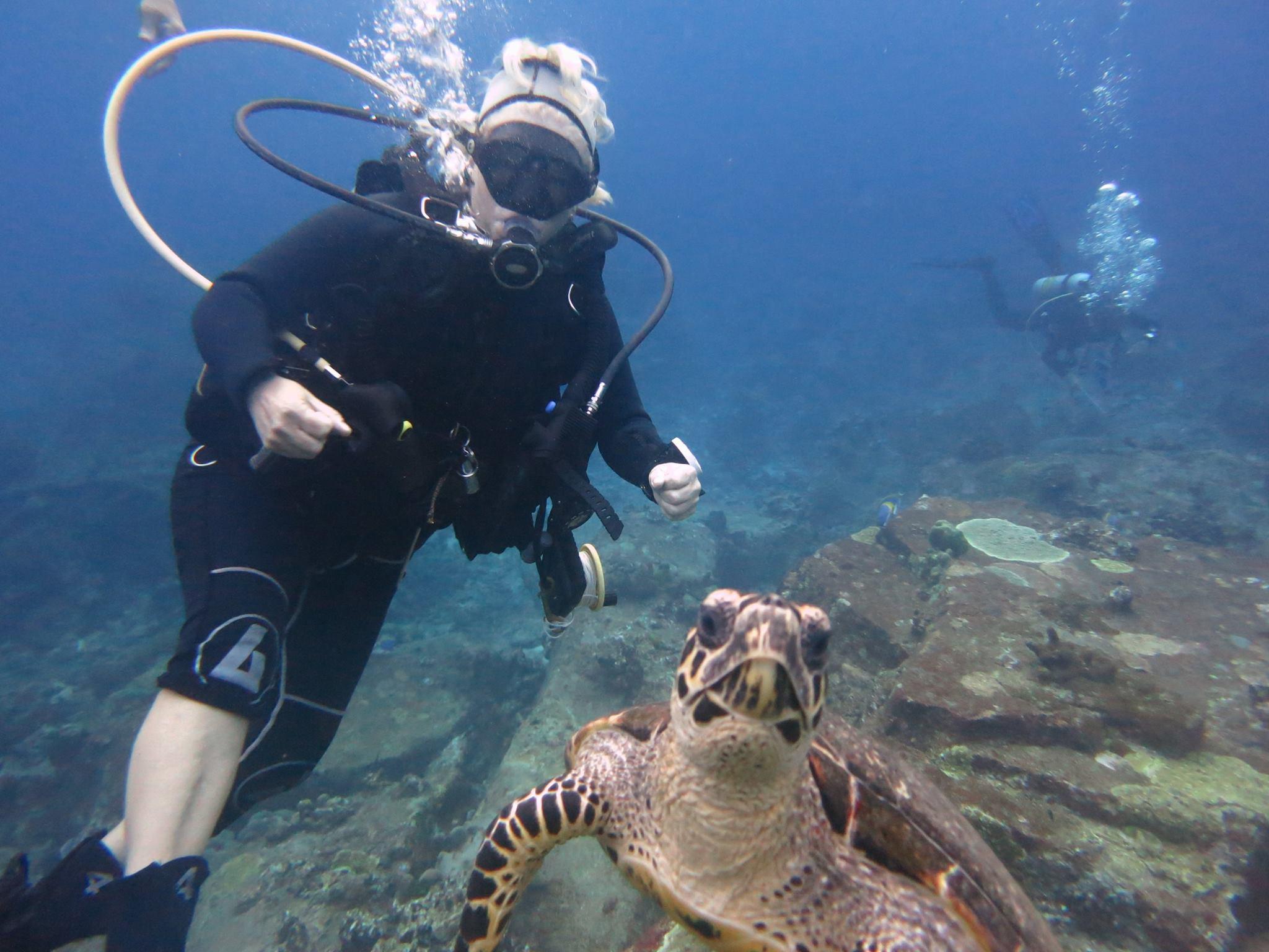 Scuba Cat Diving Phuket Thailand